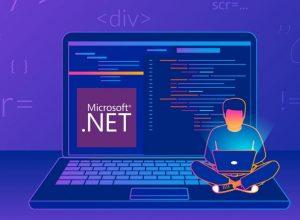 NET Framework Programming